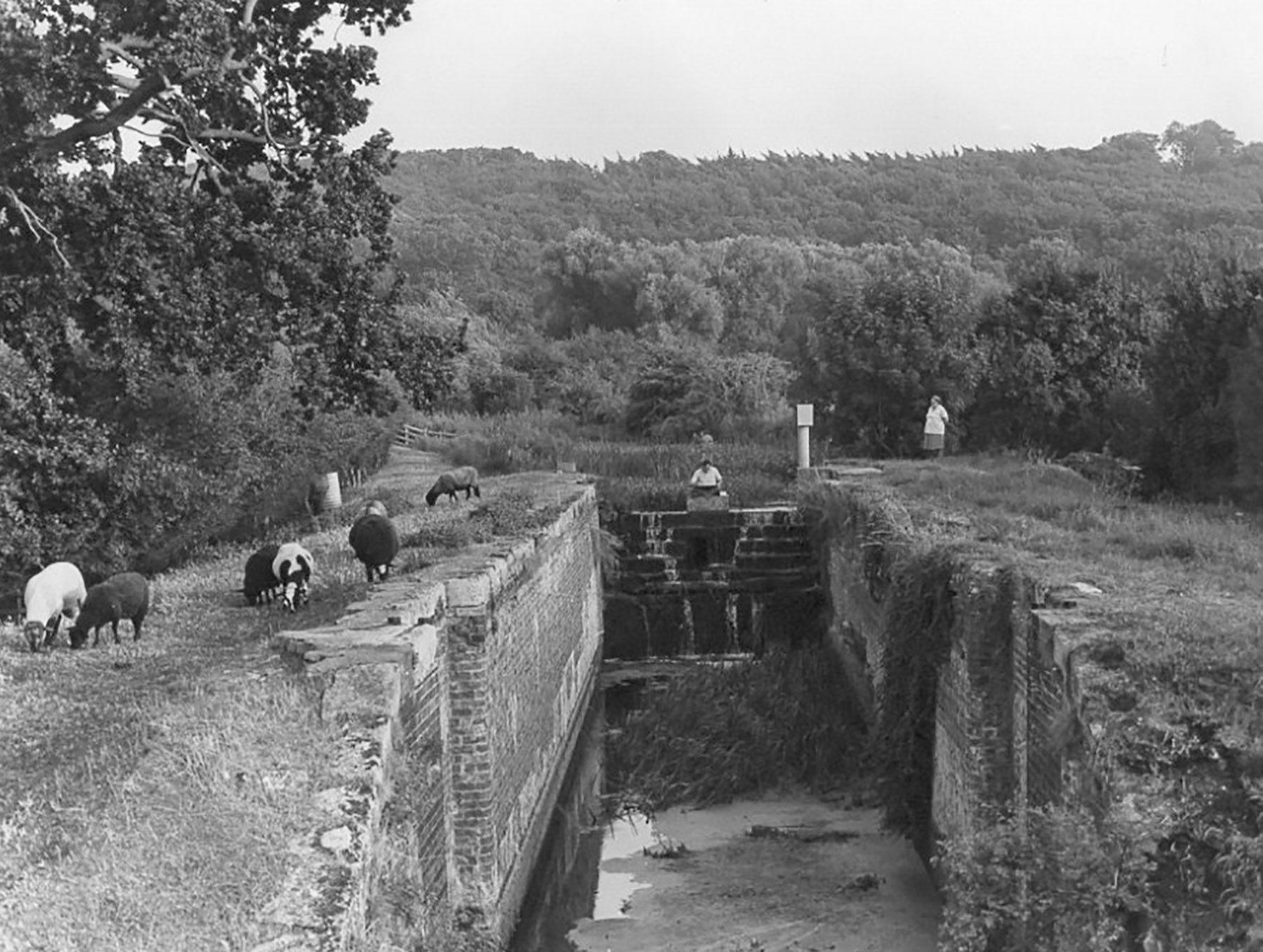 Grantham Canal - Woolsthorpe by Belvoir - Willis's Lock - Then
