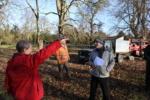 Belton Park - Eastern Avenue tree cutting