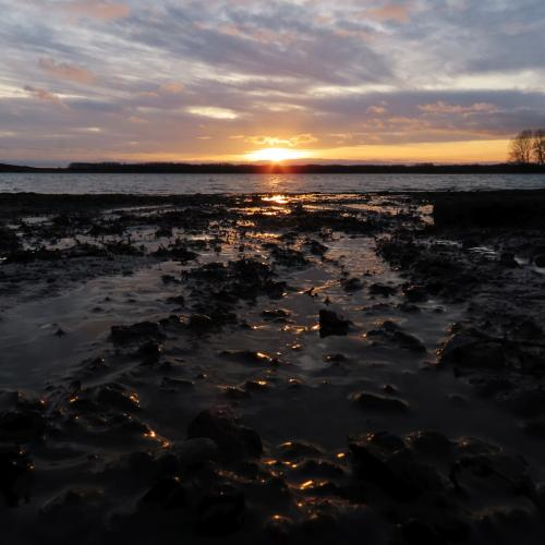Rutland Water, Rutland